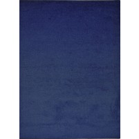 Henley Blue 3x5 Solid Rug